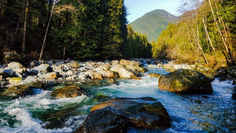 West Coast Creek royalty free stock images