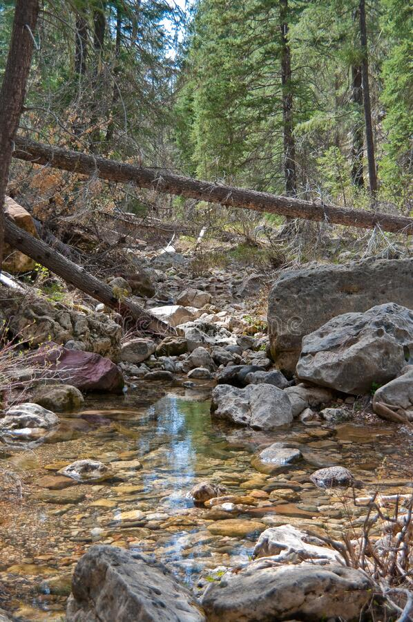 West Fork of Oak Creek royalty free stock images