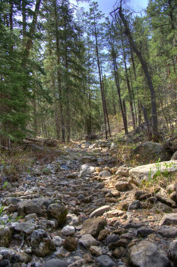 West Fork of Oak Creek royalty free stock image