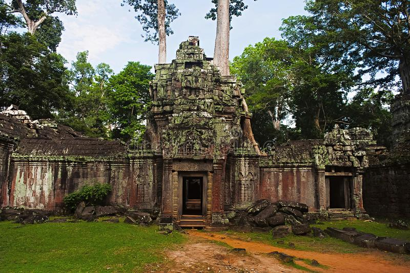 West gate of Ta Prohm, Angkor, Cambodia. Jungle temple with massive trees growing out of its walls royalty free stock image