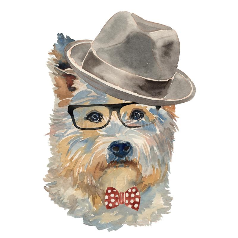 West Highland Terrier bianco in cappello illustrazione di stock