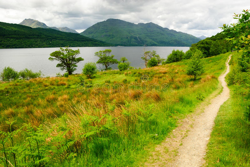 Download West highland way stock image. Image of environment, forest - 26149167
