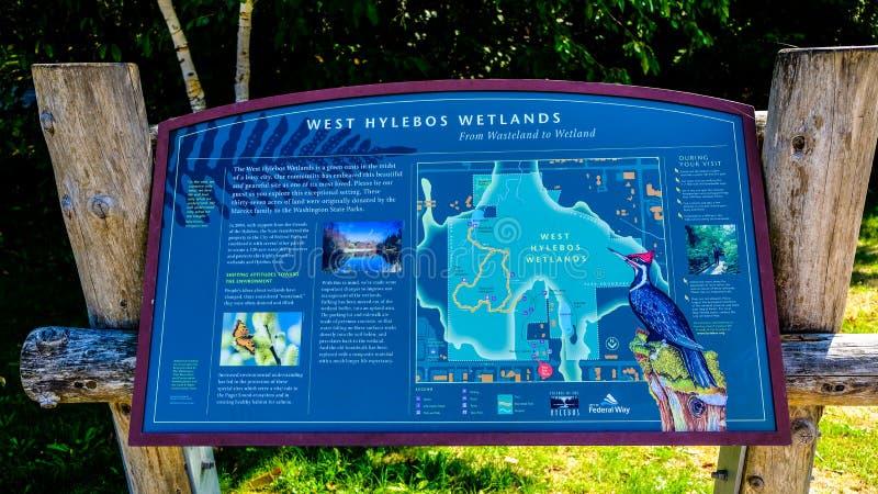 West-Hylebos wandernd, parken die Sumpfgebiete im Frühherbst, Bundesweise, Washington, Vereinigte Staaten lizenzfreies stockfoto