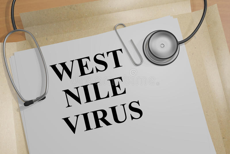West Nile Virus - medical concept. 3D illustration of WEST NILE VIRUS title on a document royalty free illustration