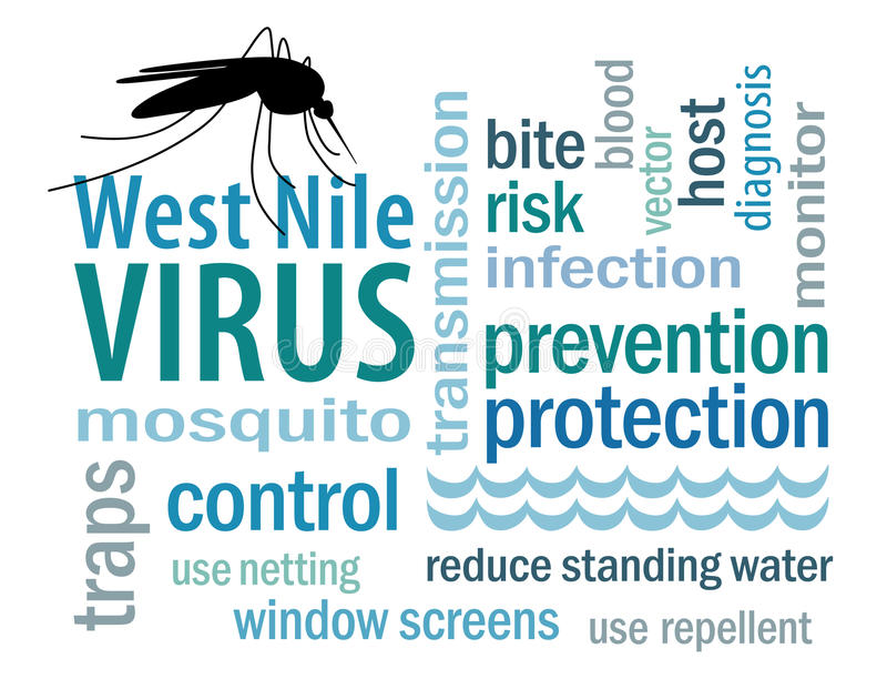 West Nile Virus Word Cloud. Mosquito, standing water, graphic illustration, isolated on white. EPS8 compatible royalty free illustration