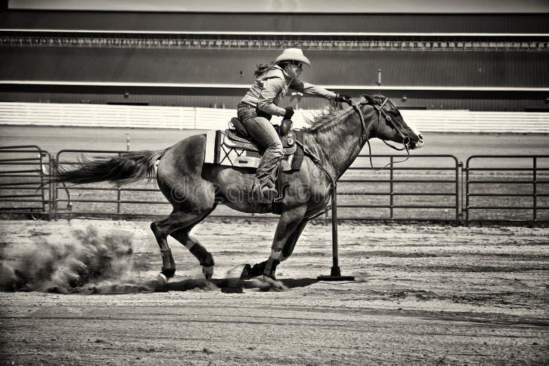 West- Pferde-Pole-Bieger im kiesigen Sepia lizenzfreie stockfotografie