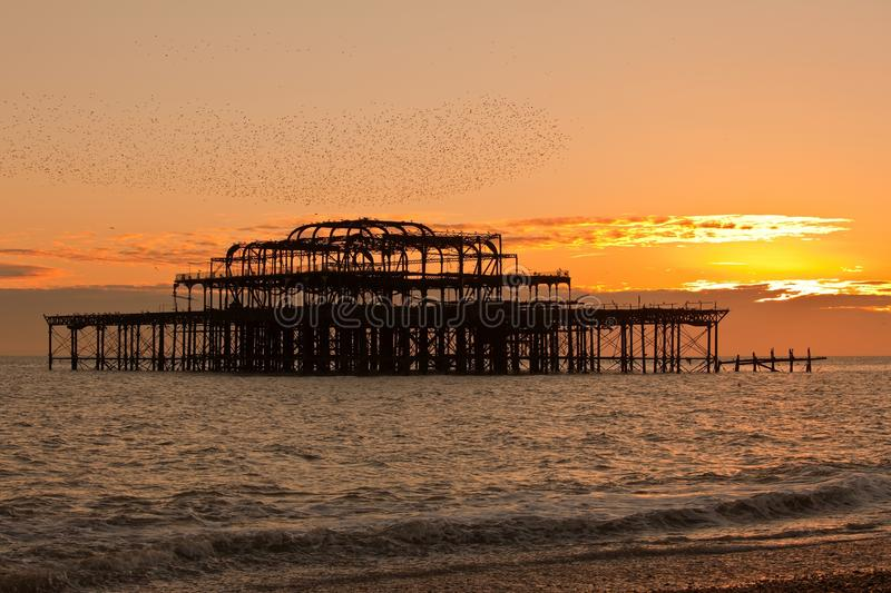 West pier of Brighton England. Sunset view of West pier in Brighton England with flock of birds fly over stock image
