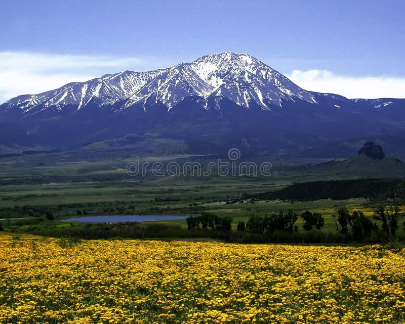 West Spanish Peak royalty free stock images