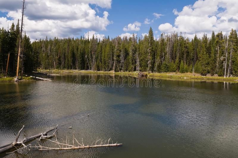 Download West Thumb Basin stock image. Image of thumb, yellowstone - 10977303
