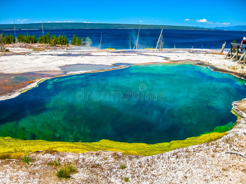 West Thumb Geyser Basin. Spectacular colorful Abyss Pool and dead trees in the West Thumb Geyser Basin of Yellowstone National Park, Wyoming, United States stock photo