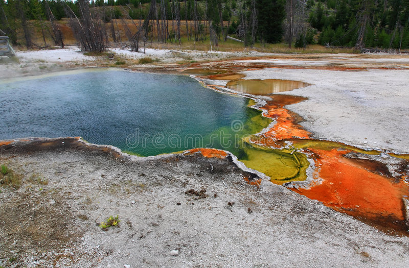 West Thumb Geyser Basin in Yellowstone. National Park stock images