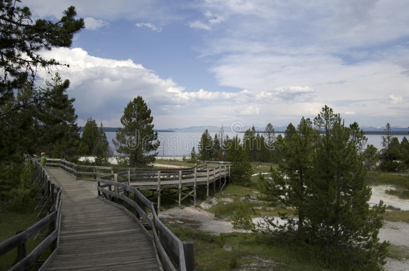 West thumb lake yellowstone. Is a popular site in Yellowstone royalty free stock image