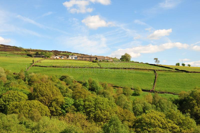 West yorkshire dales scenery with farmhouses perched on high hills with typical walled fields and midgley moor in the distance. With blue sunlit summer sky royalty free stock images