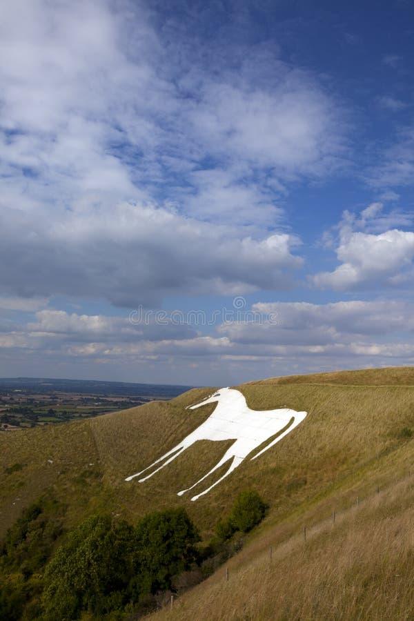 Westbury White Horse stock images