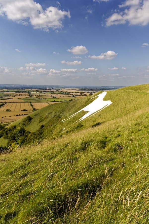 Westbury White Horse, Wiltshire, UK royalty free stock photography
