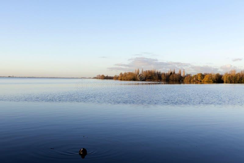 Westeinder Plassen See in Aalsmeer - Holland - das niederländische (Europa) stockfoto