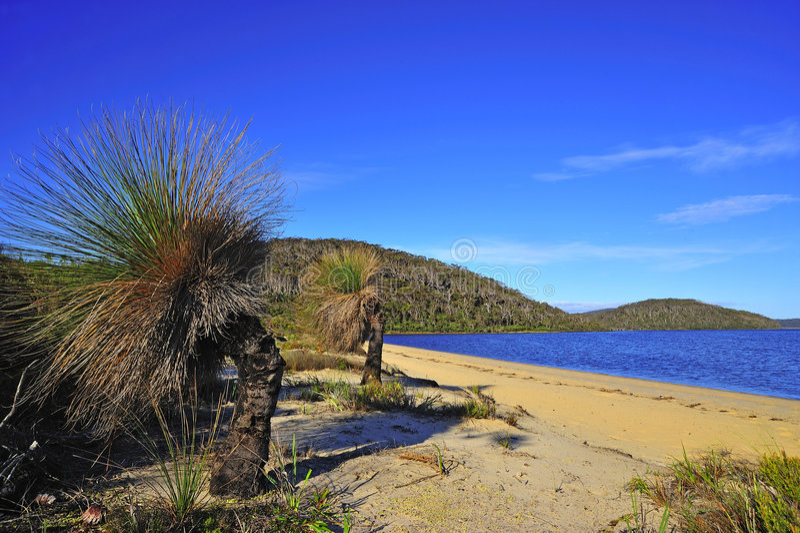 Westelijk Australië: Het park van D'entrecasteaux n. royalty-vrije stock afbeeldingen