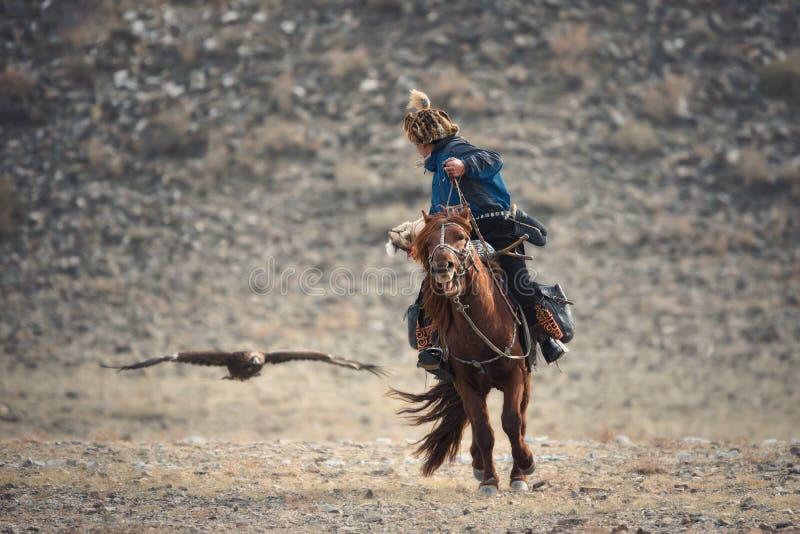 Westelijk Mongolië, Gouden Eagle Festival Mongools Rider-Hunter In Blue Clothes And een Bonthoed op Bruin Paard en Gouden Vliegen royalty-vrije stock afbeelding