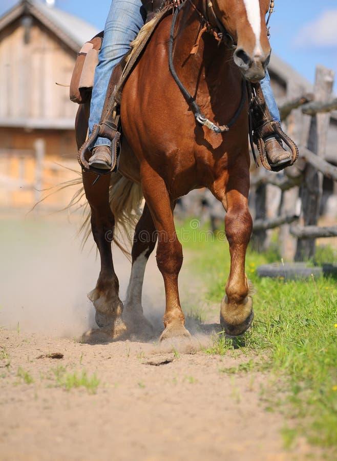 Westelijk paardrijden royalty-vrije stock foto's