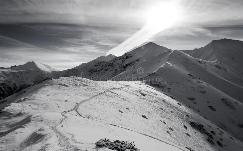 Westelijke Tatras in November-sneeuw stock afbeeldingen