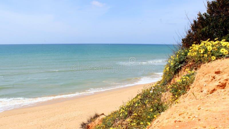 Western Algarve beach scenario, Portugal royalty free stock images