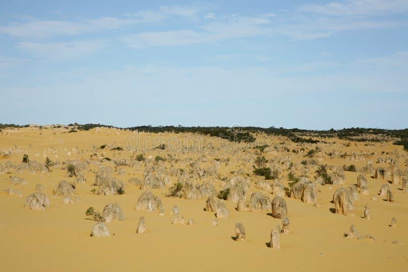 Western Australia - Pinnacles stock photo