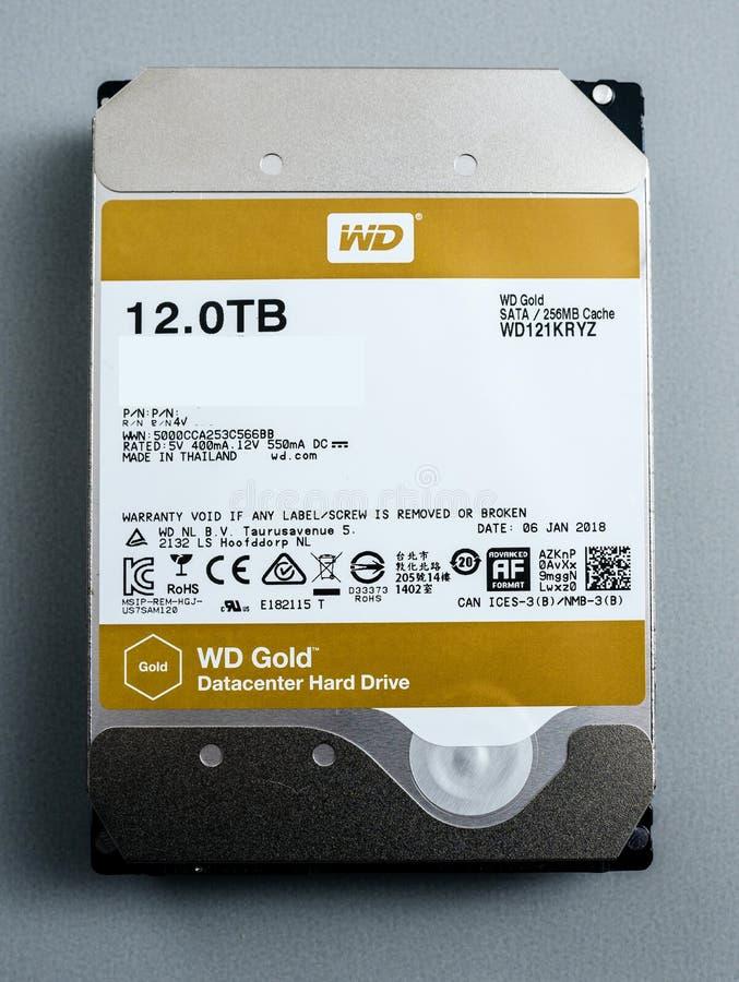 Western Digital HDD Złocistego dyska twardego 12 tb frontowy widok obrazy royalty free