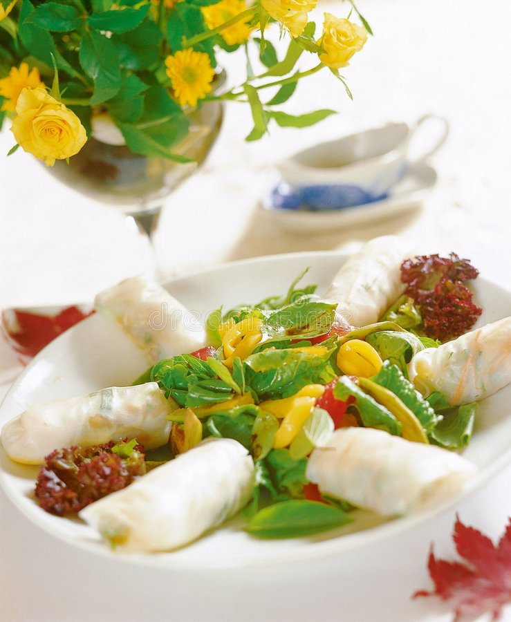 Download Western Food stock photo. Image of roll, vietnamese, dish - 677112