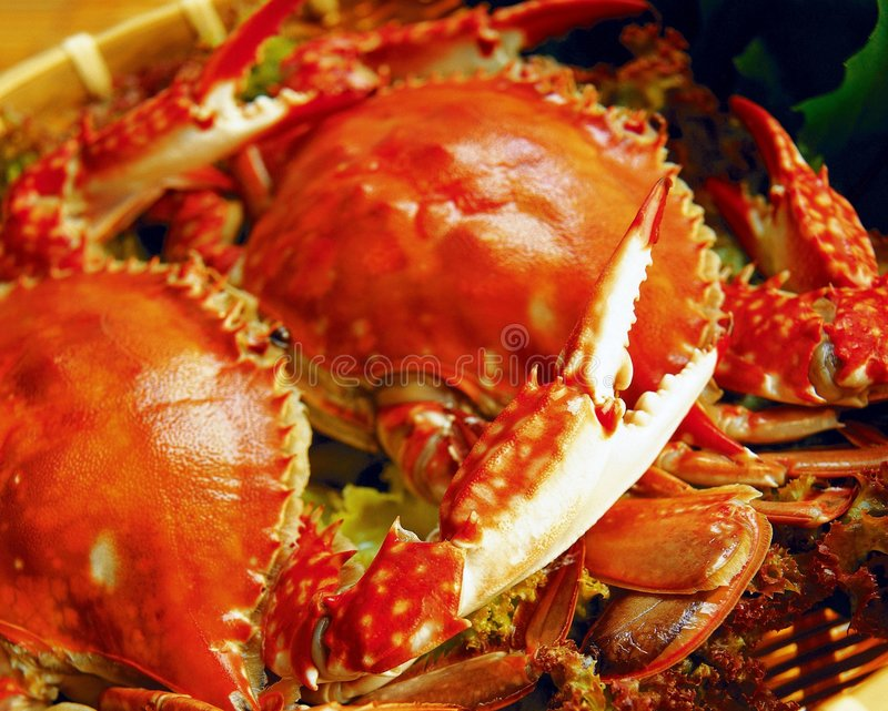 Download Western Food stock image. Image of shadow, light, crab - 677121