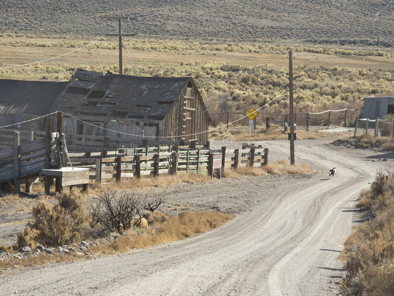 Download Western Nevada ranch scene stock photo. Image of corral - 22462182