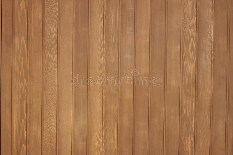 Western Red Cedar Wood Panel Stock Photo Image Of