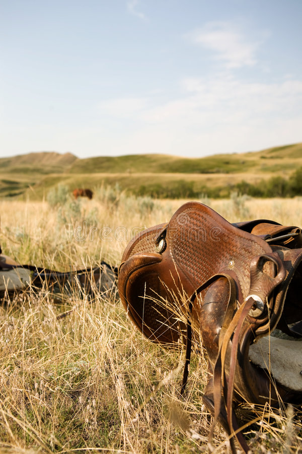 Download Western Saddle stock photo. Image of culture, equine, wild - 3989150