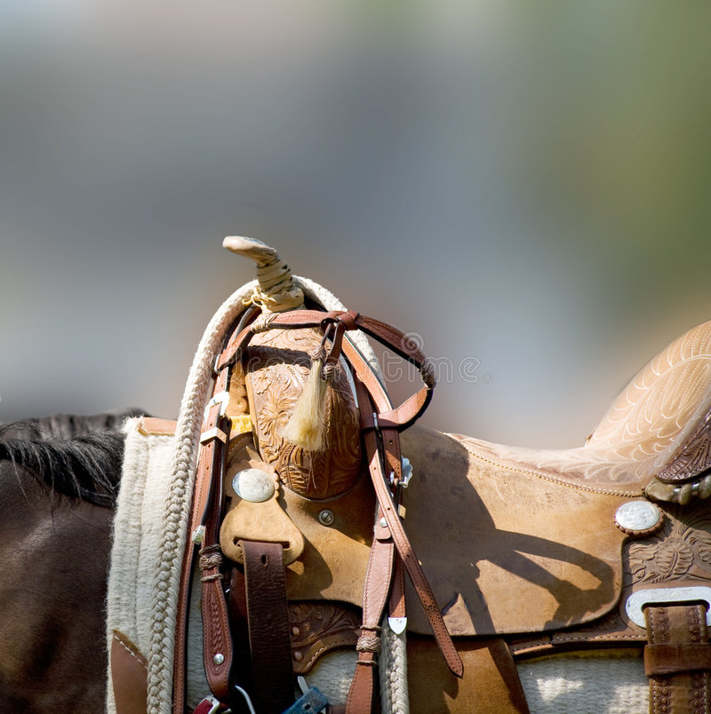 Western Saddle stock photography
