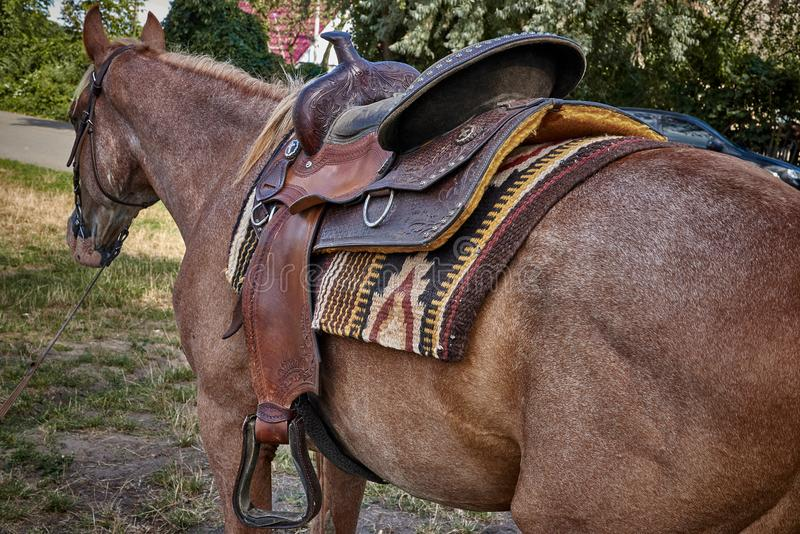 Western saddle for a horse stock image