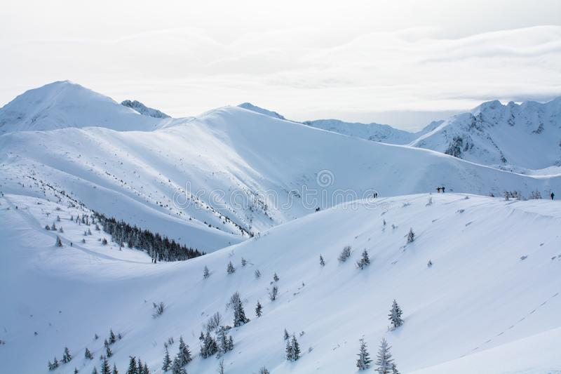 Winter view of the mountains stock image