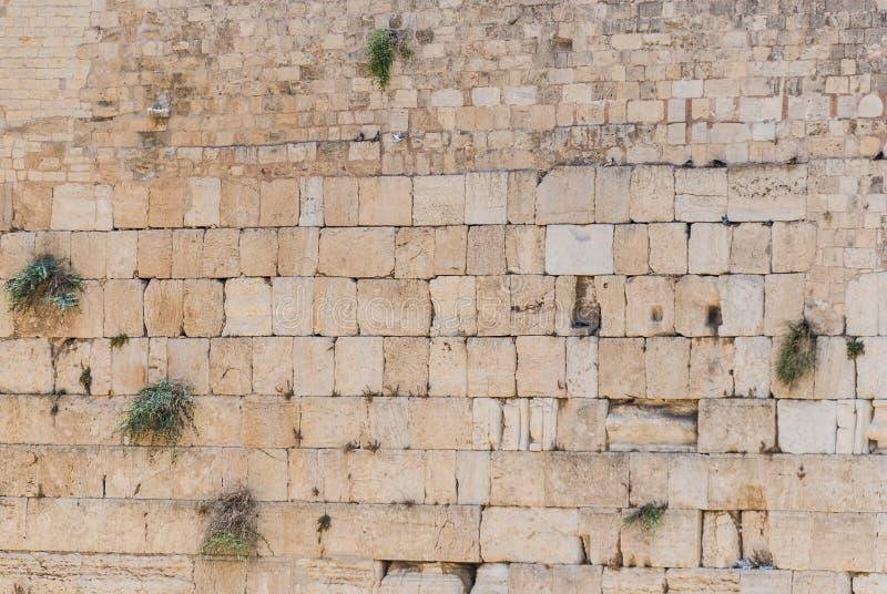 Western Wall, Jerusalem royalty free stock photos