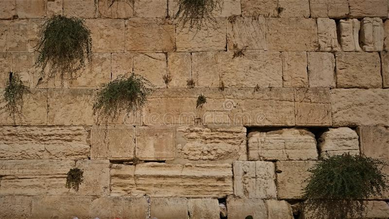 The Western wall or Wailing wall is the holiest place to Judaism in the old city of Jerusalem, Israel.  stock images