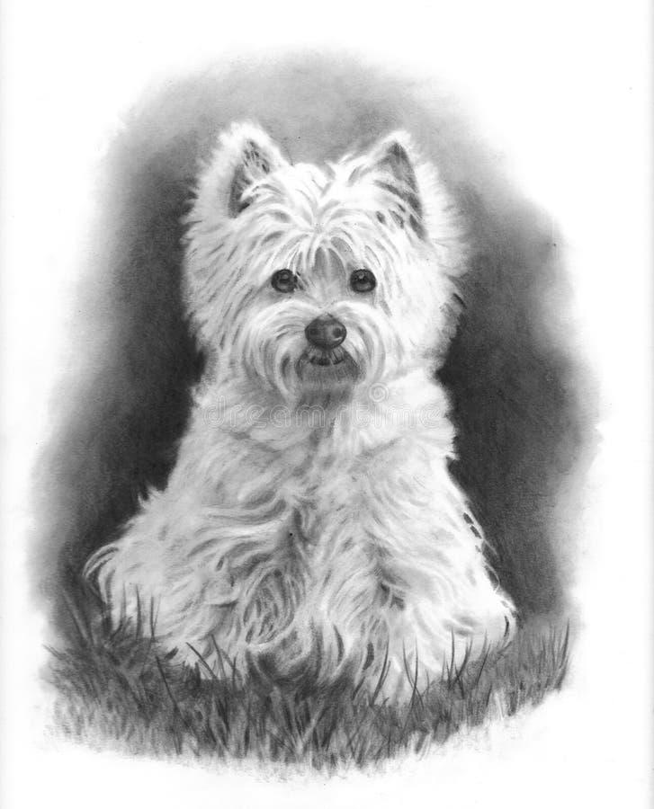 westie för hundteckningsblyertspenna stock illustrationer