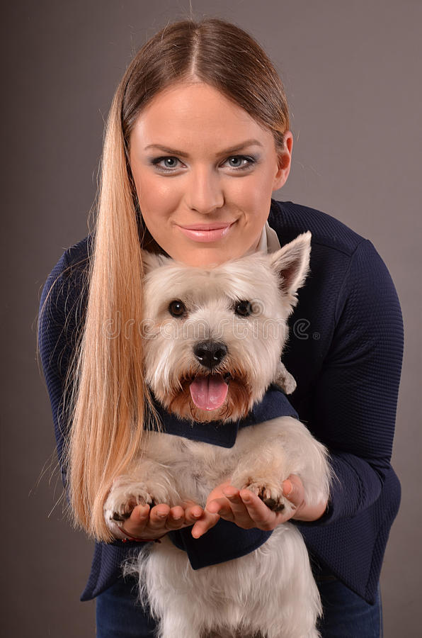 Westie and girl stock image