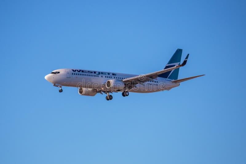 WestJet flygbolag Jet Aircraft royaltyfria foton