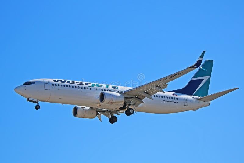 WestJet flygbolagBoeing 737-800 landning i Toronto royaltyfri bild