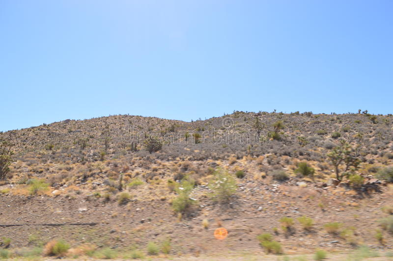 Westland in USA. The image of westland in Nevada, USA stock photography