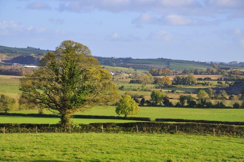 Westmeath Landschaft lizenzfreie stockbilder