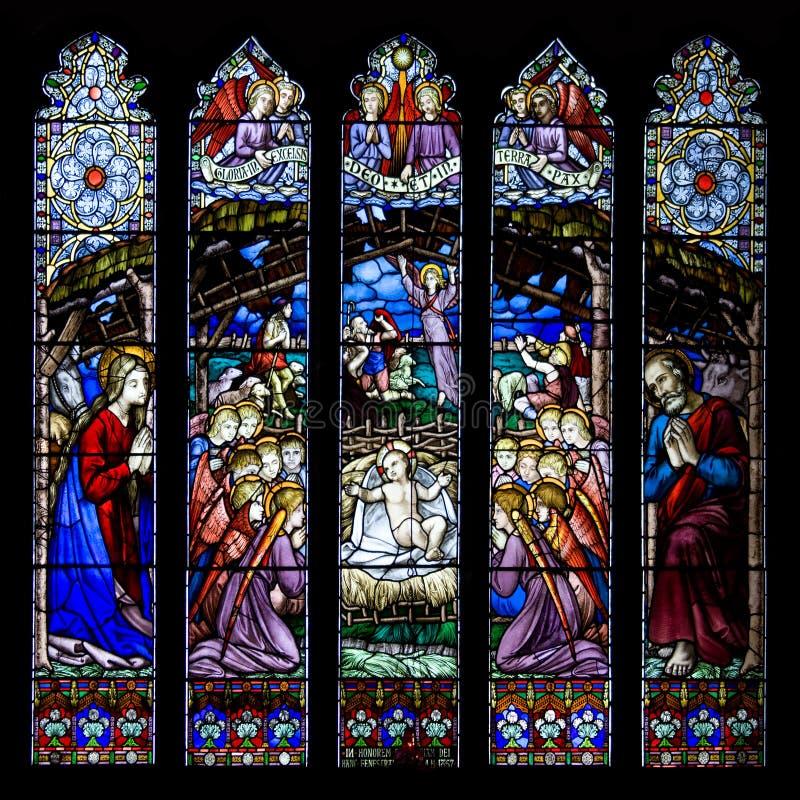 Westminster fönster - Chester Cathedral - UK royaltyfri foto