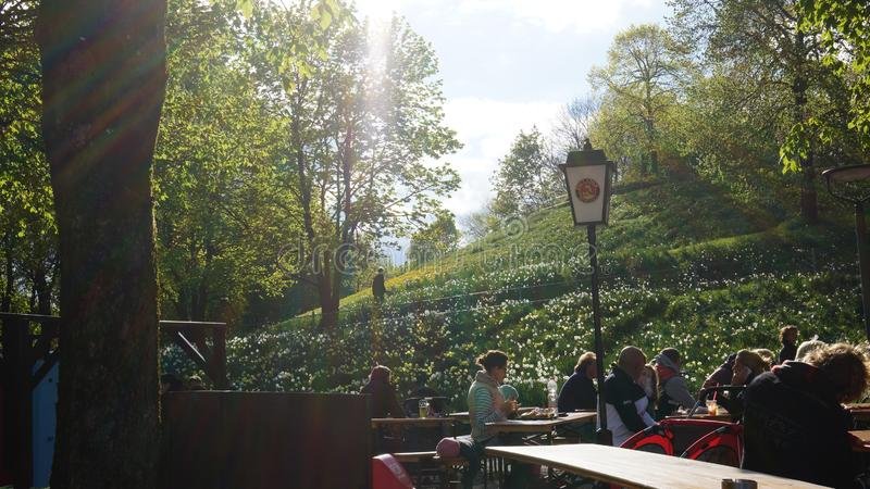 Westparkmünchen-Sonnenuntergangtagesfrühlings-Biergarten lizenzfreie stockfotos