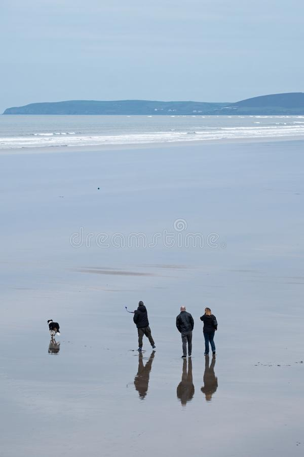 Three people and a dog on a deserted beach stock images