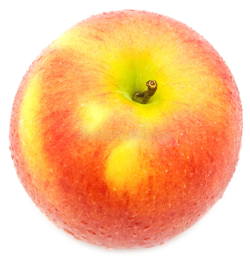 Free Wet Apple Royalty Free Stock Images - 10800599