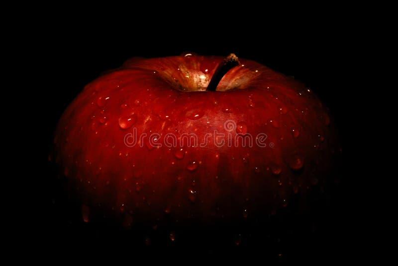 Wet apple royalty free stock image