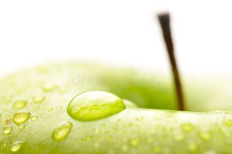 Download Wet apple closeup stock image. Image of liquid, drop - 14950007