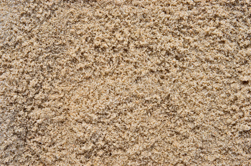 Wet Beach Sand Stock Image